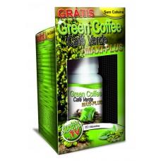 GREEN COFFEE MAXIPLUS KIT